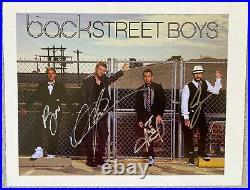 Backstreet Boys Signed IP 8.5x11 Color Promo Photo Nick Carter, Brian Littrell