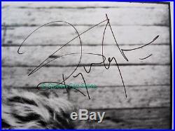 ROGER TAYLOR Original 8 x 10 Signed Promo Photograph Autograph 1994 Queen