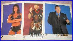 Rock / Hhh / Chyna 14x Wwf 1989 2003 Promo Signature Photos Rare! Superstars