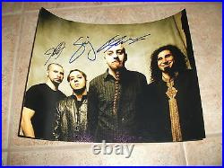 System Of A Down Signed Autographed 11x14 Promo Photo x3 #1 SERJ +2 F1